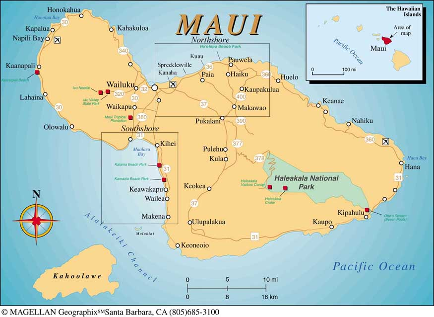 Maui Windsurfing Vacations And